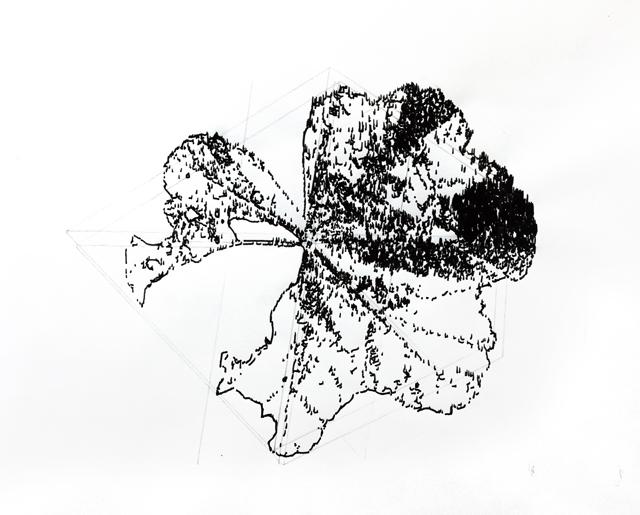 feuilledemauve01